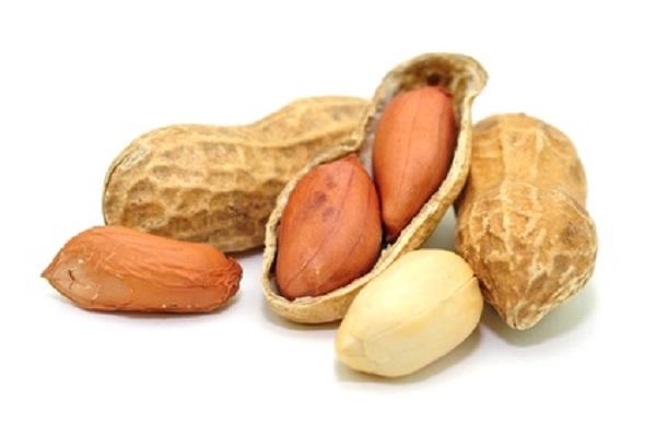 Erdnuss 1